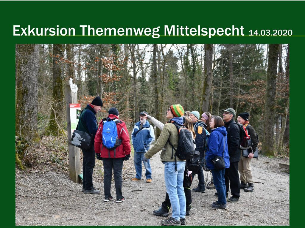 E001-Mittelspechtweg Bülach 2020
