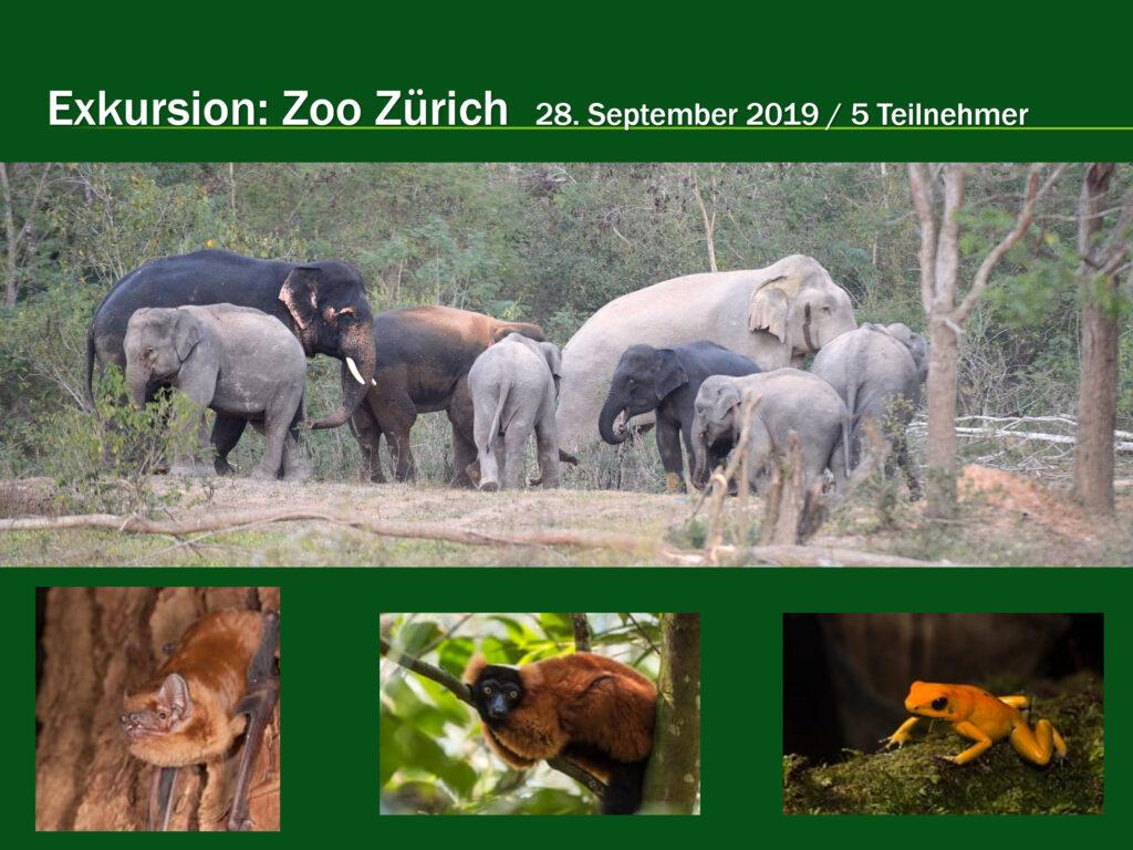 E002-Zoo Zürich 2019