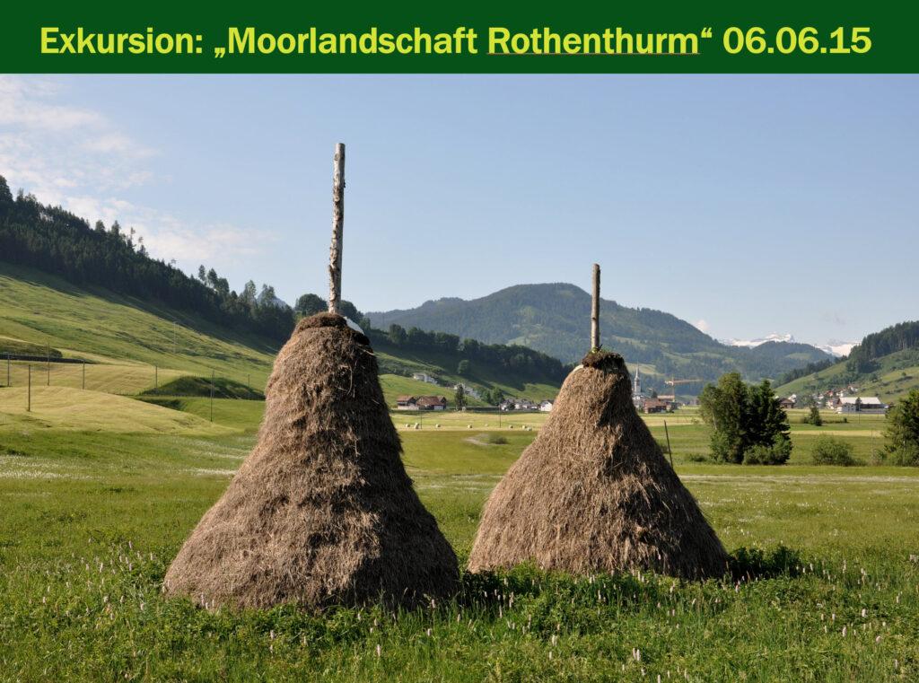 E009-Moorlandschaft Rothenturm 2015