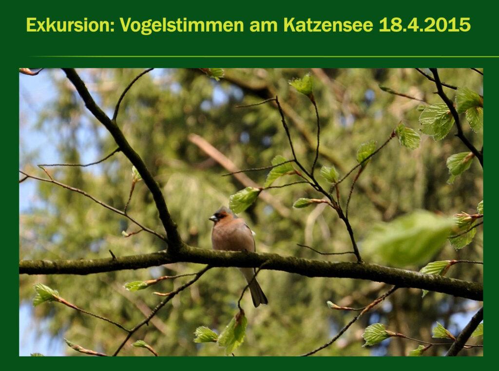 E010-Vogelstimmen Katzensee 2015