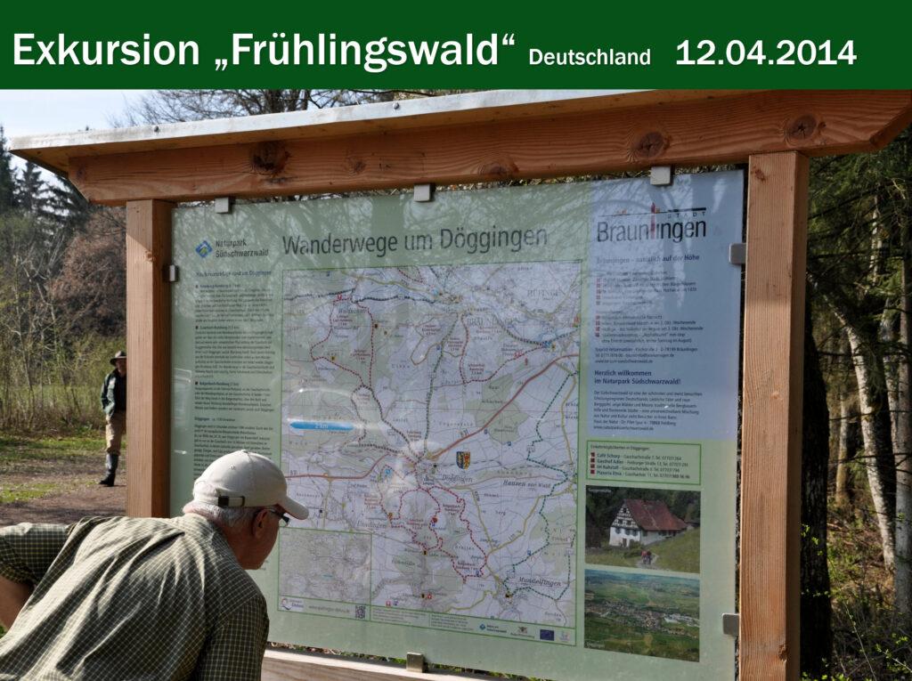 E012-Frühlingswald Doggingen DE 2014