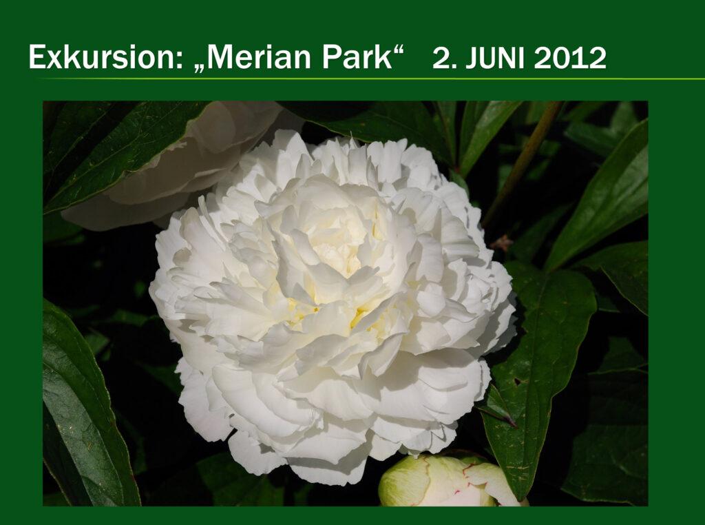 E016-Merianpark 2012