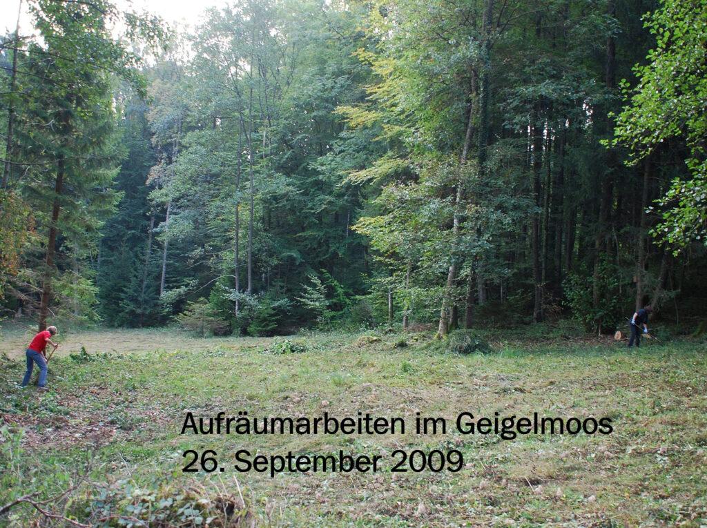 V010-Aufräumen Geigelmoos 2009